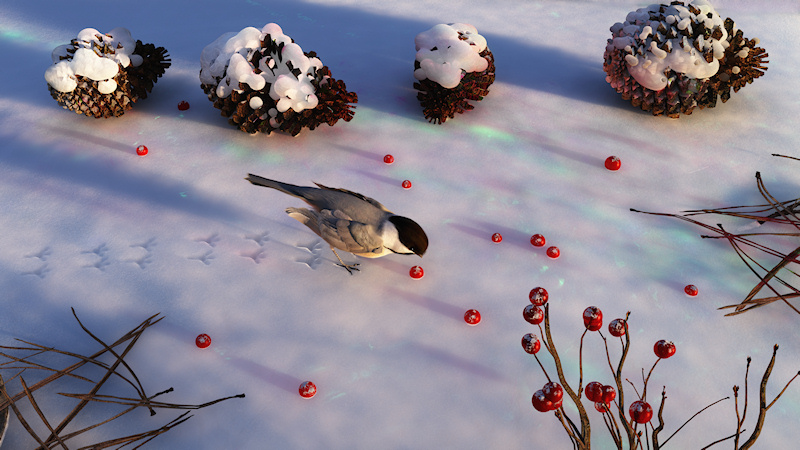 Chickadee Winter